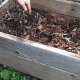 how to do vermicompost at home